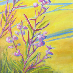 Fireweed-and-Fritz-Cove-thumb