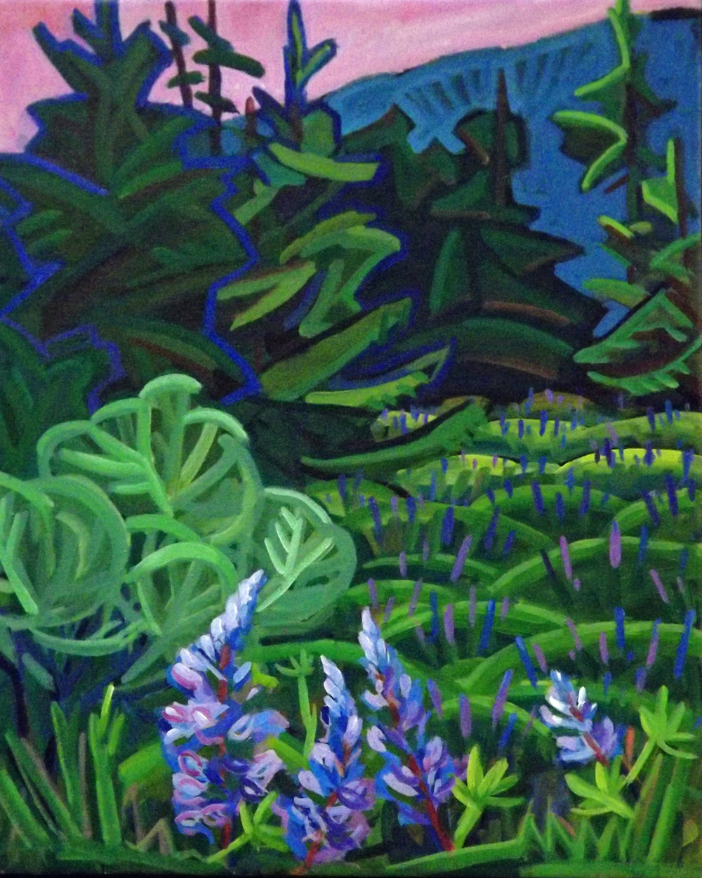 Lupine Field, Fish Creek